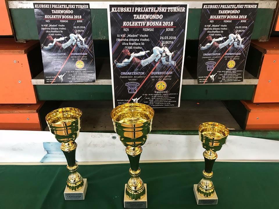 Klupski prijateljski turnir Taekwondo kolektiv Bosna 2018