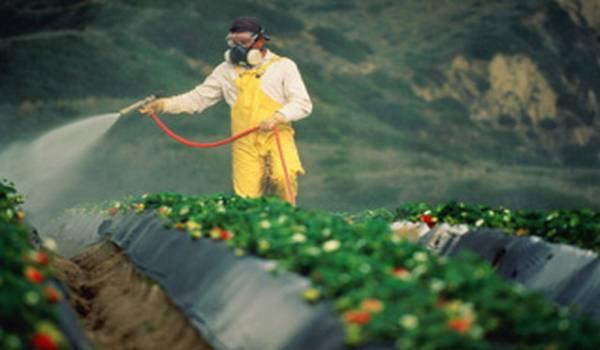 Samo obučeni poljoprivrednici će moći kupiti pesticide!