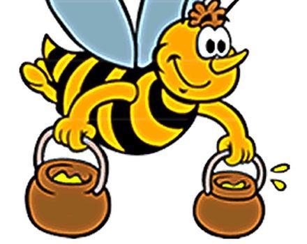 Subašić Miralem – Uzgoj pčela i prodaja meda